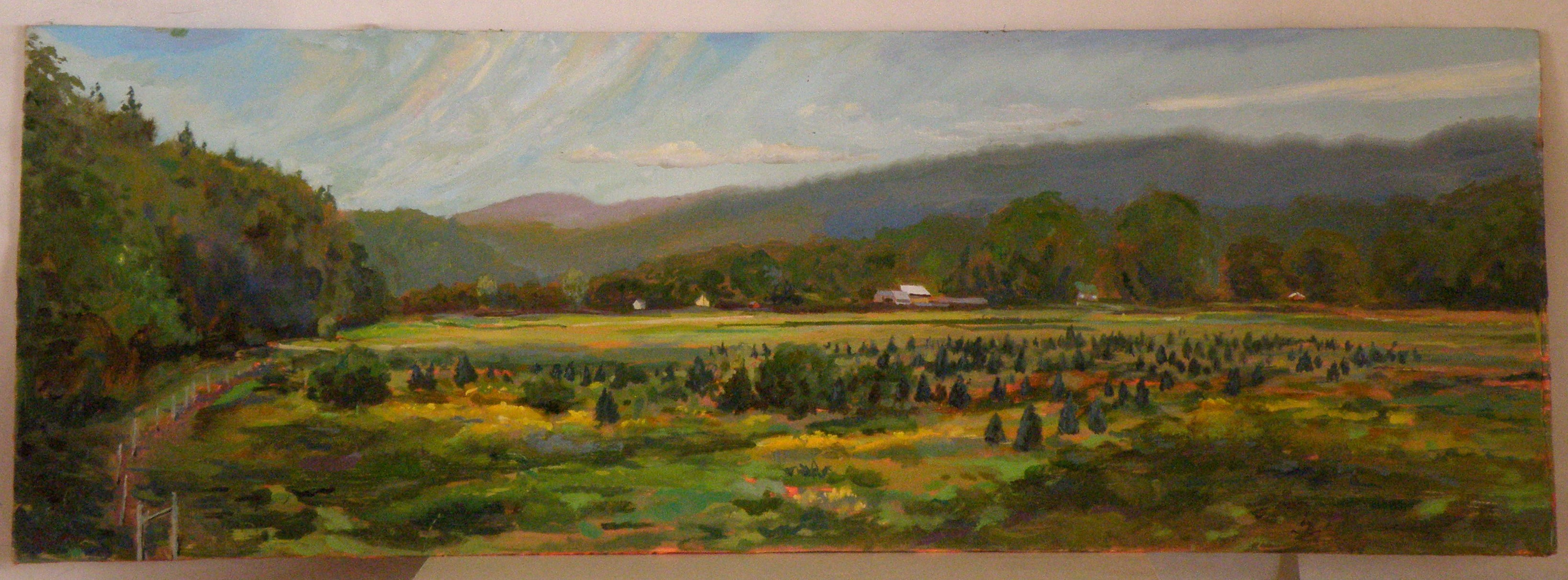 Christmas Tree Farm , Second Study, Route 5, Springfield, Vermont; oil on panel