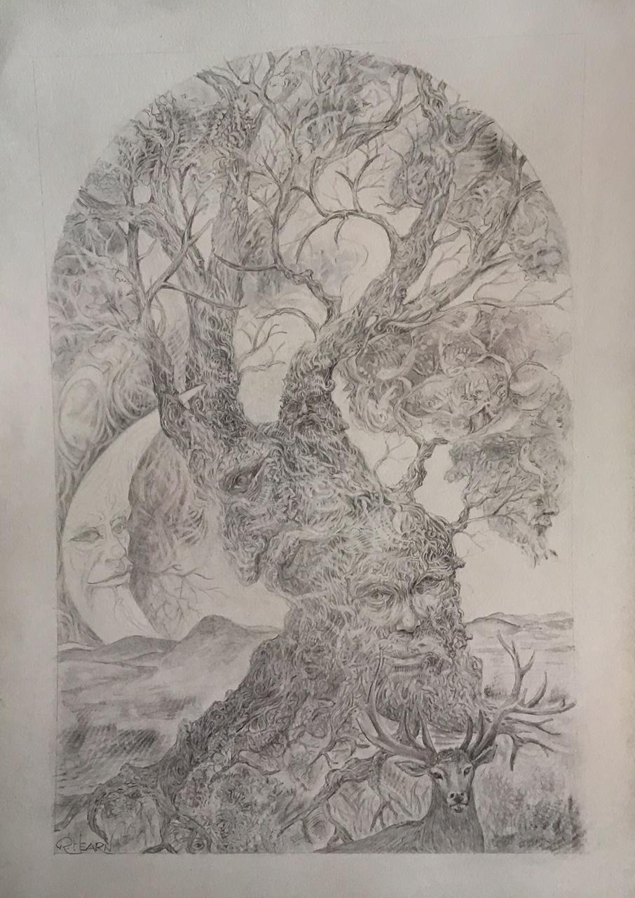 [Old Tree]